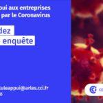 enquete-coronavirus-cci-arles